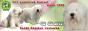 Питомник южнорусских овчарок